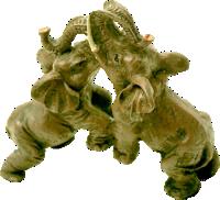 Wapiganapo tembo